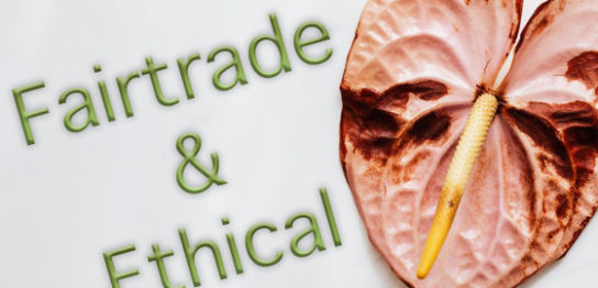 fairtrade and ethical